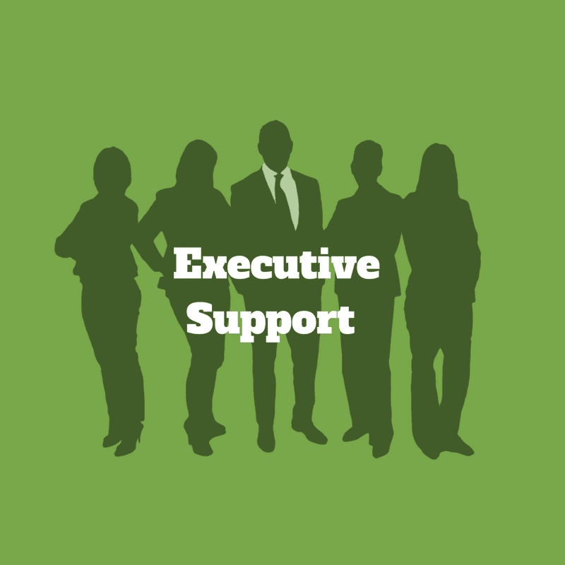 executive support green